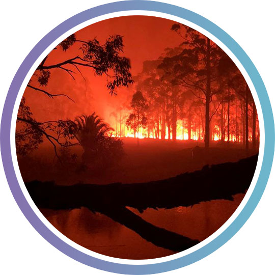 Bushfire burns out of control on a property in South Nowra, the flames are bright, smoke fills the air.
